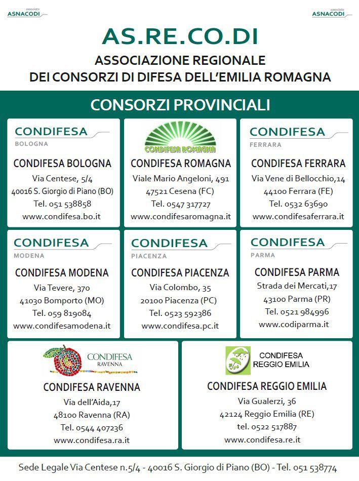 Asrecodi Manifesto Macfrut 24-26 Settembre 2014
