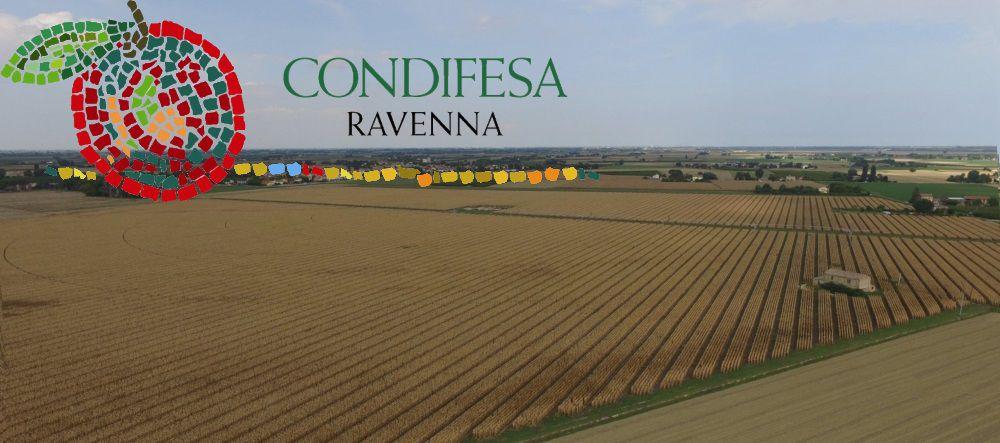 Condifesa Ravenna - Prima Rata 2015