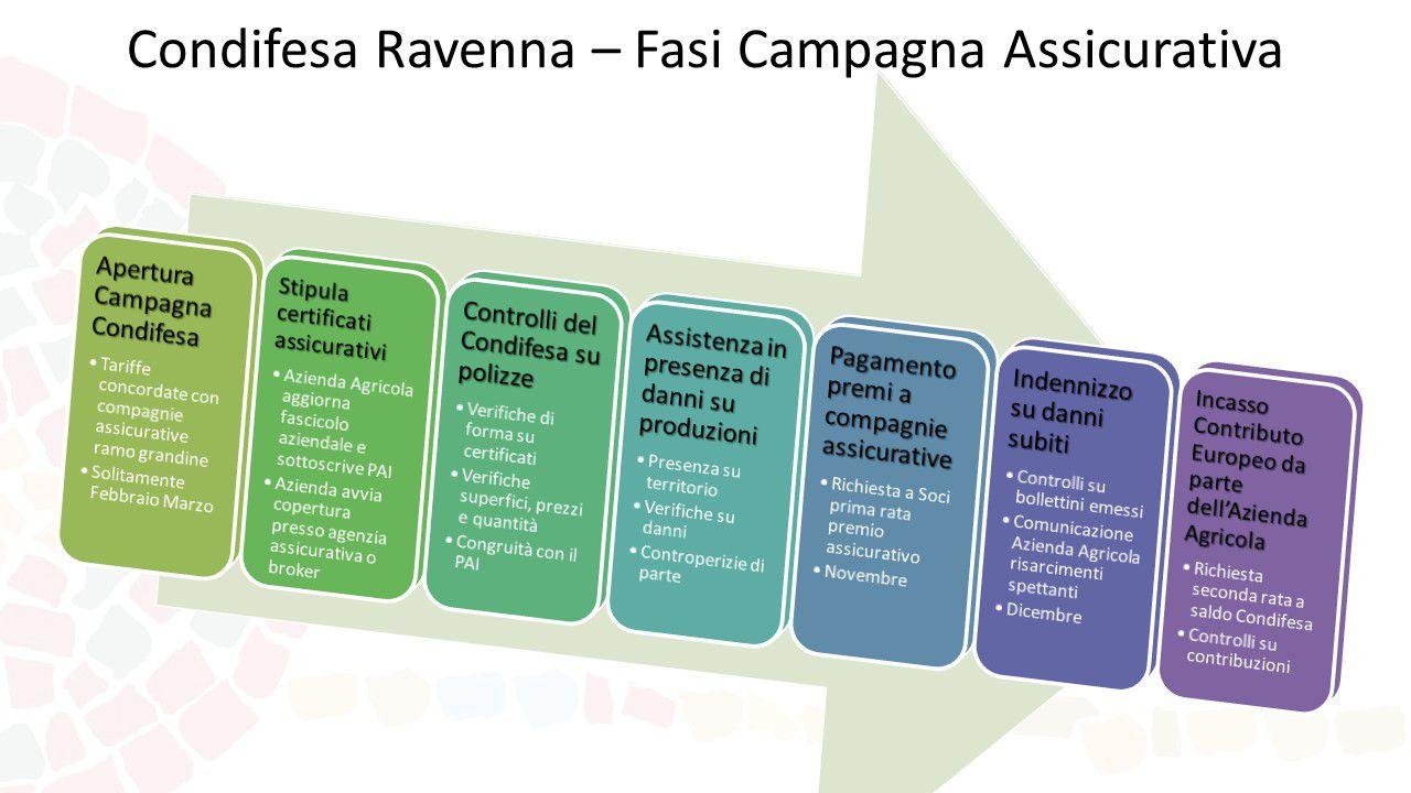 Presentazione Condifesa Ravenna Fasi Campagna