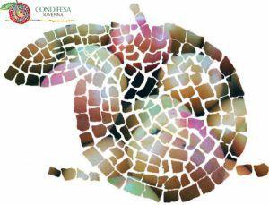 Logo Aperto CondifesaRA Albicocche 2016